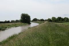 11.-Upstream-from-Westonzoyland-Pumping-Station-4