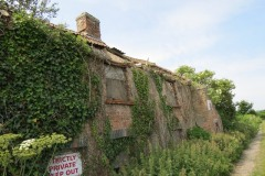 9.-Derelict-Cottage-by-River-Parrett-downstream-from-Millwood-Farm-1