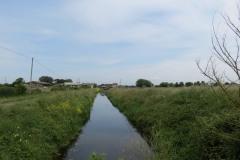 10.-Northmoor-Main-Drain-from-Vinneys-Bridge-2
