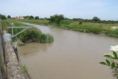 11.-Northmoor-main-drain-joins-the-River-Parrett