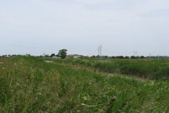 12.-Downstream-from-Northmoor-Pumping-Station-4