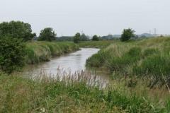 13.-Flowing-through-Haymoor-4