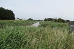 10.-Downstream-from-Somerset-Bridge-2