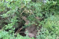 Petherton Bridge Mill