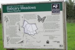 Babcary-Meadoes