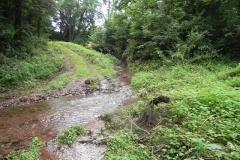 13. Downstream from Escott Farm Accommodation Bridge A