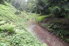 16. Downstream from Escott Farm Accommodation Bridge A