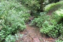 20. Downstream from Escott Farm Accommodation Bridge A