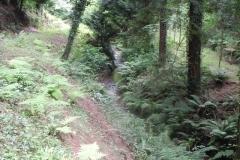 21. Upstream from ROW bridge 4640