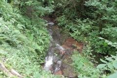 31. Downstream from ROW bridge 4640