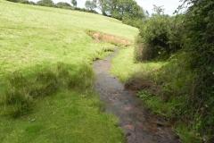 4. Downstream from Rodhuish