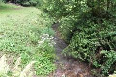 43. Upstream from ROW bridge 4641