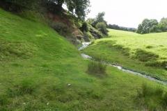 5. Downstream from Rodhuish