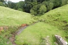 6. Downstream from Rodhuish