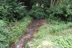 8. Looking upstream from Escott Farm Accommodation Bridge A