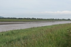 16.-Upstream-from-Combwich-3