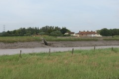 16.-Upstream-from-Combwich-4