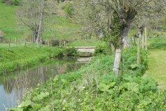 3.-Telliford-Mill-Mill-Stream-Bridge