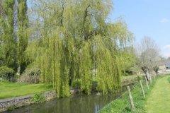 9.-Telliford-Mill-Mill-Stream