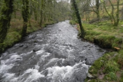 13. Looking upstream from Castle bridge