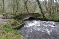 15. Castle Bridge upstream arch