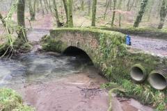 17. Castle Bridge downstream arch
