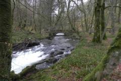 20. Looking upstream to Castle Bridge