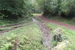 Whitley Brake to Muddymoor