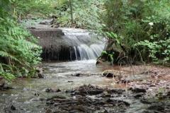 13. Weir ownstream from ROW Bridge 4641