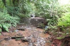 14. Upstream from Bilbrook