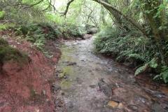 15. Upstream from Bilbrook