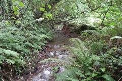16. Upstream from Bilbrook