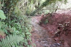 18. Upstream from Bilbrook
