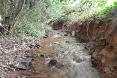 19. Upstream from Bilbrook