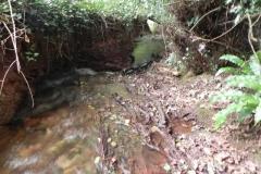 20. Upstream from Bilbrook