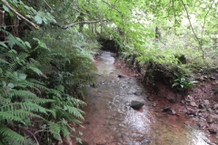 22. Upstream from Bilbrook
