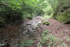 24. Upstream from Bilbrook