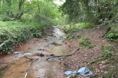 25. Upstream from Bilbrook