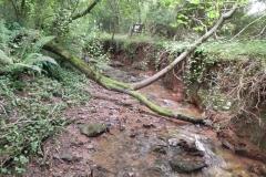 27. Upstream from Bilbrook