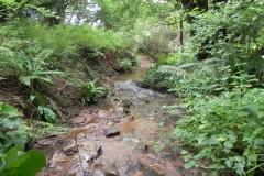 28. Upstream from Bilbrook