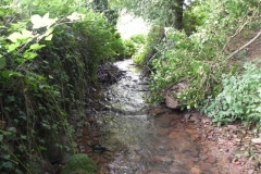 29. Upstream from Bilbrook