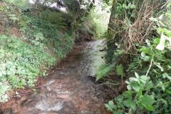 31. Upstream from Bilbrook