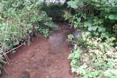 32. Upstream from Bilbrook