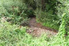 34. Upstream from Bilbrook