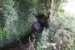 36. Upstream from Bilbrook