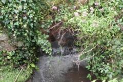 37. Upstream from Bilbrook