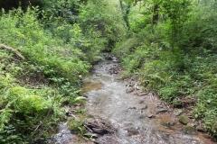 7. Downstream from ROW Bridge 4641  (10)
