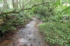 7. Downstream from ROW Bridge 4641  (3)