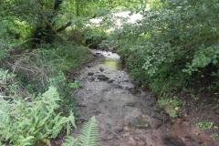 7. Downstream from ROW Bridge 4641  (6)