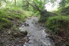 7. Downstream from ROW Bridge 4641  (8)